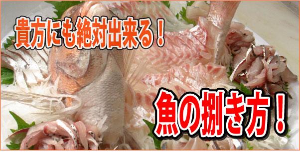 魚の捌き方!