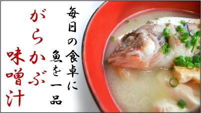味噌汁が激旨なカサゴ!