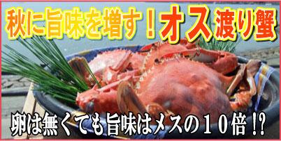 メスの10倍の旨味!オス渡り蟹!